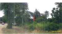ที่ดินเปล่าหลุดจำนอง ธ.ธนาคารกรุงไทย หนองรี บ่อพลอย กาญจนบุรี