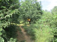 ที่ดินเปล่าหลุดจำนอง ธ.ธนาคารกรุงศรีอยุธยา ลาดหญ้า เมือง จังหวัดกาญจนบุรี